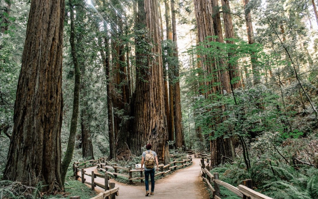 Choosing Growth Over Fear